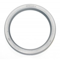 LIP SEAL 120MM