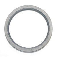 LIP SEAL 125MM