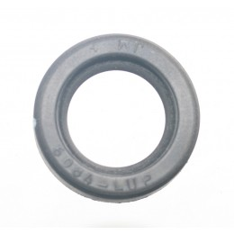 LIP SEAL 25MM
