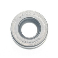 LIP SEAL F 25MM